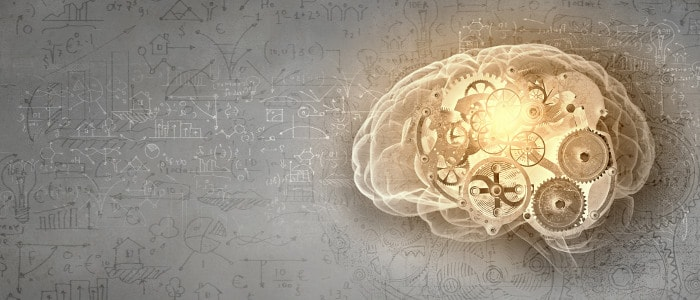 A review of the effects of modafinil on the brain